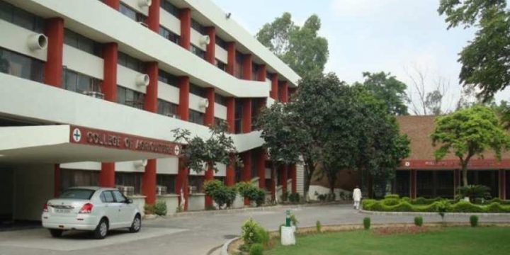 College of Agriculture in Hisar - Agriculture engineering college in hisar